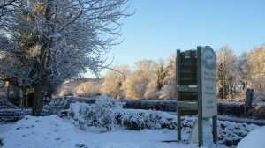 Winter at Carrbank