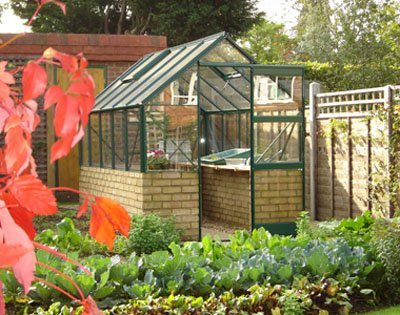 Dwarf Wall Aluminium Greenhouse